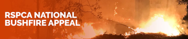 RSPCA National Bushfire Appeal