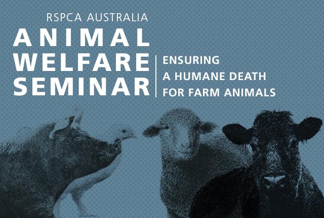 Image of: Rspca Nsw Rspca Animal Welfare Seminar Rspca Worcester Animal Welfare Seminar 2018 Rspca Australia