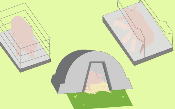 Pig housing table diagram