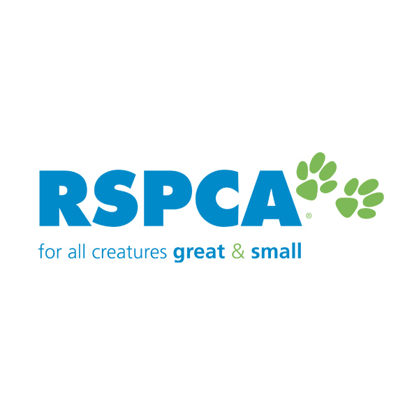 rspca australia for all creatures great small 2016 car