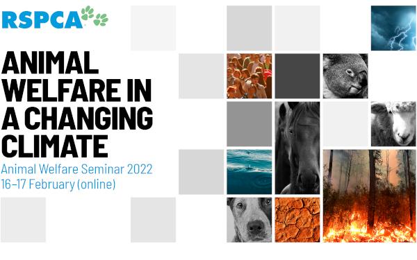 Animal welfare seminar 2022