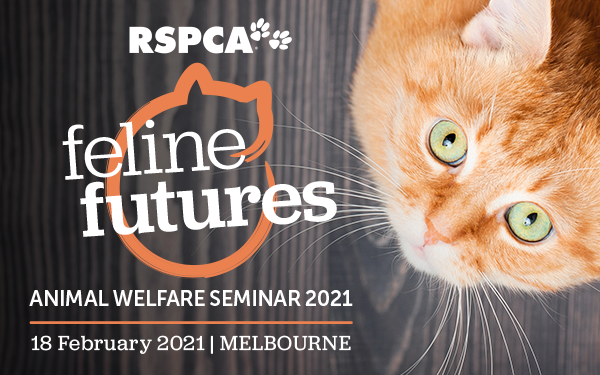 Animal welfare seminar 2021 feature cat