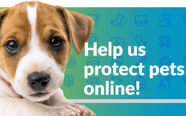 RSPCA Guidelines for the Online Advertising of Pets | RSPCA