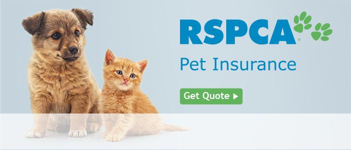 RSPCA Australia | For all creatures great & small
