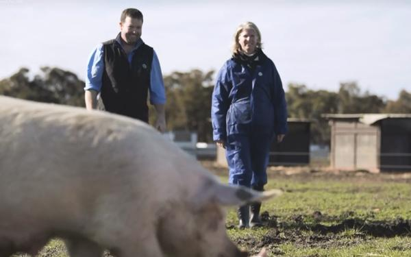 Still from video showing RSPCA worker on farm