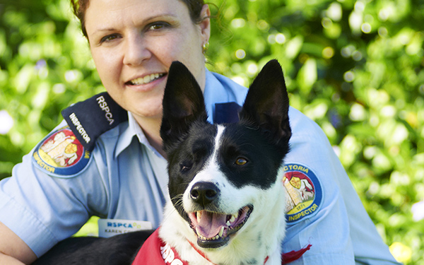 RSPCA Victoria inspector with dog