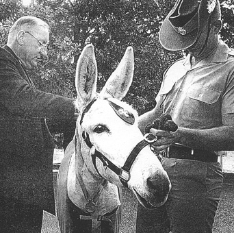 Tim Fisher with Simpson, the mascot donkey and his Australian Army minder.