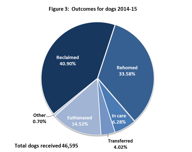 Figure 3: Outcomes for dogs 2014-15